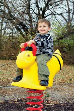 Playsets & Playground Equipment | American Home